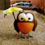 Cute Owl Puzzle